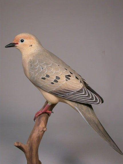 Die besten carved wooden birds ideen auf pinterest