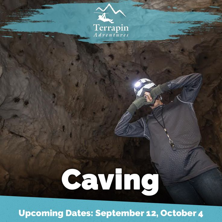 Whether you call it caving, spelunking, or potholing you will experience the adventure of a lifetime. Our knowledgeable guides will introduce you to the basics of cave exploration, safety, and stewardship.   Call 301-725-1313 or click here: http://www.terrapinadventures.com/tours-trips/caving/ #Caving  #Spelunking