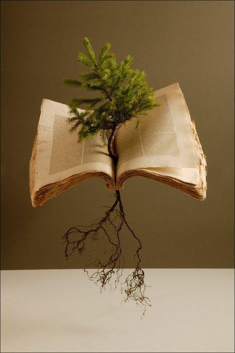 Los libros que lees son tus raíces