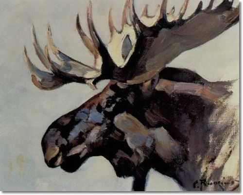 Carl Rungius - Moose Head Archival Fine Art Paper Print