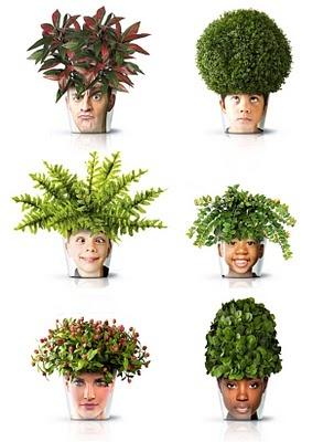 Diseñados por Good, los 'facepots' son una mezcla divertida de floreros y marcos de fotos.