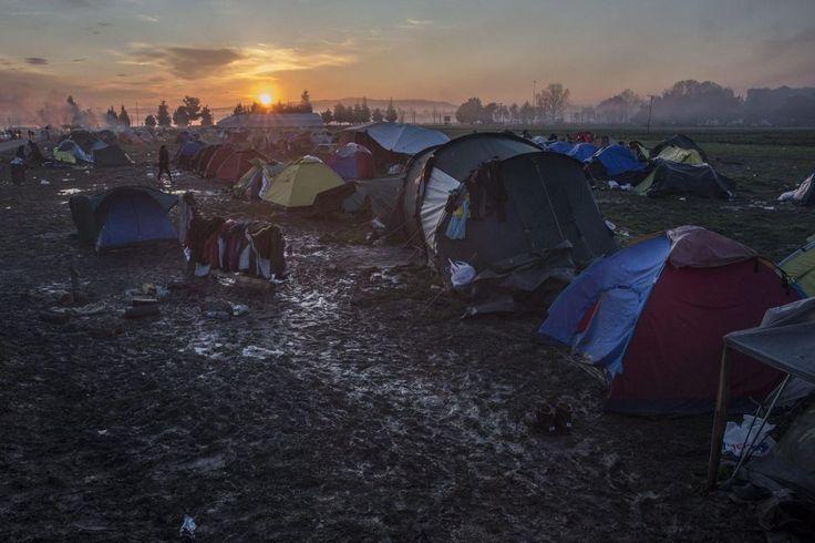 Il Sole sorge sulle tende dei #migranti vicino alla cittadina greca di #Idomeni, presso il confine con la #Macedonia. Circa 36 mila profughi sono presenti in Grecia in attesa di intraprendere la rotta balcanica, chiusa per le restrizioni imposte dalla Macedonia.