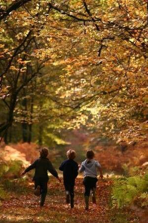 Autumn, children, freedom, nature...pure joy.