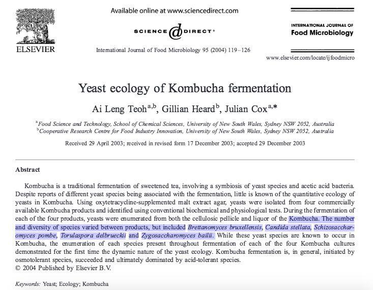 Kombucha    Probiotics    What's in Kombucha?