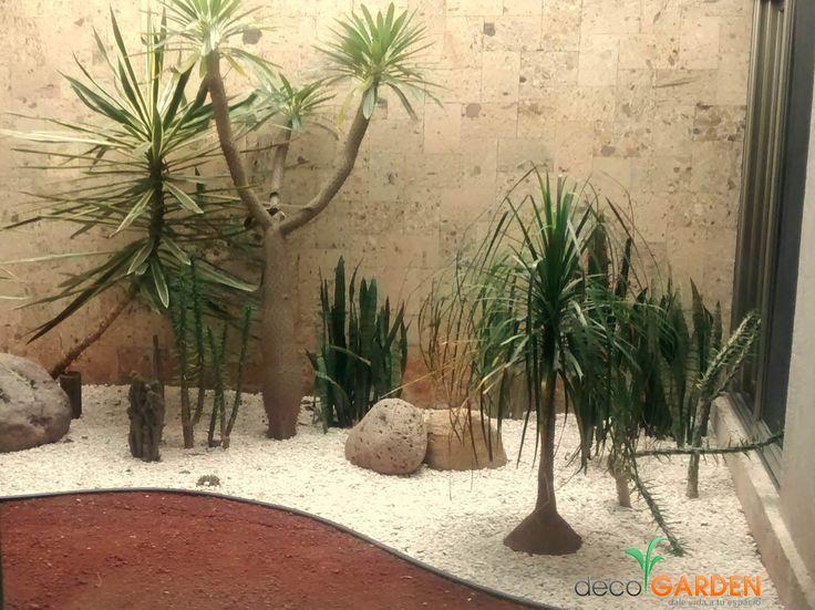 47 mejores im genes sobre jardin en pinterest plantas y for Jardines pequenos con piedras blancas