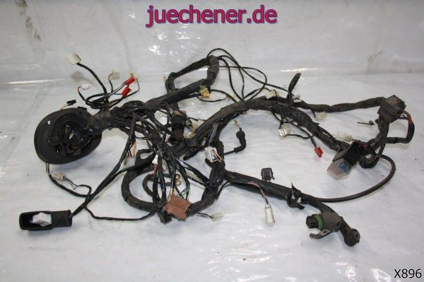 Piaggio X9 125 Evo Kabelbaum komplett Kabelstrang  Check more at https://juechener.de/shop/ersatzteile-gebraucht/piaggio-x9-125-evo-kabelbaum-komplett-kabelstrang/