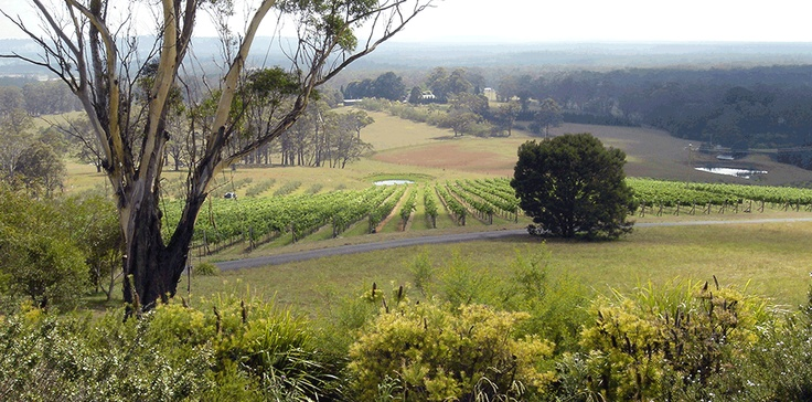 Southern Highlands Food & Wine Home Page