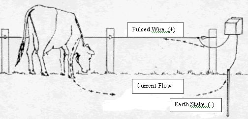 25 best ideas about pasture fencing on pinterest farm for Electrical blueprints for dummies