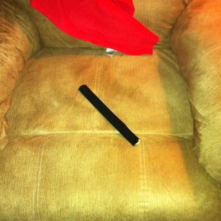 I Use Those Snap Bracelets To Keep My Dog Off My Furniture , 1 Time Getting