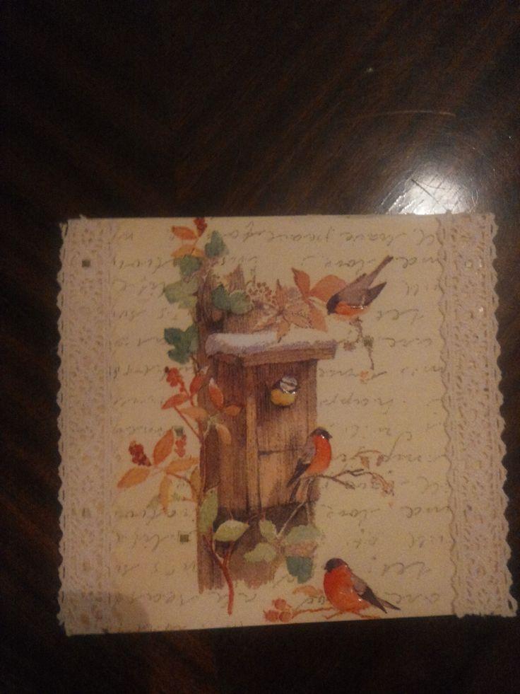 lintu kortti