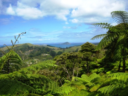 Coromandel Town - The nearby Driving Creek Railroad was built over the course of 26 years by a local potter, who uses it to get clay from the nearby mountainside to his workshop. ride the narrow-gauge railway up to a great viewpoint of the surrounding forest reserve and coastline.