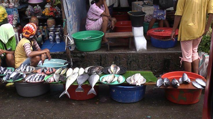 Ambon city 2010