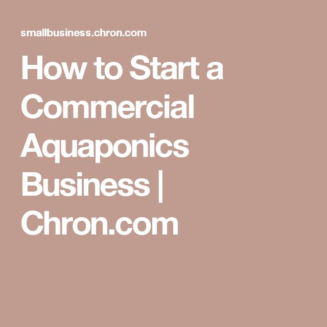 How to Start a Commercial Aquaponics Business | Chron.com