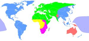 Caucasian Race-- (also Caucasoid; or occasionally Europid) is a grouping of human beings historically regarded as a biological taxon, including some or all of the populations of Europe, North Africa, the Horn of Africa, Western Asia, Central Asia and South Asia.[2] The term has been used in biological anthropology for many people from these regions, without regard necessarily to skin tone. First introduced in early racial science and anthropometry, the term was formerly used to denote one of