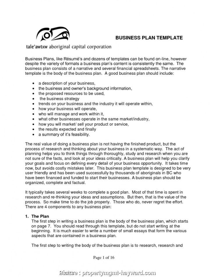 Nonprofit Business Plan Template Pdf in 2020 One page