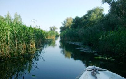 Narrow Channels in the Danube Delta, Romania at romanianexperience.wordpress.com