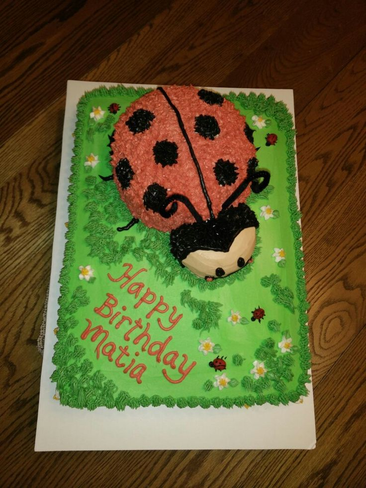Last bug cake for a little friends birthday! Picture only! No directions.