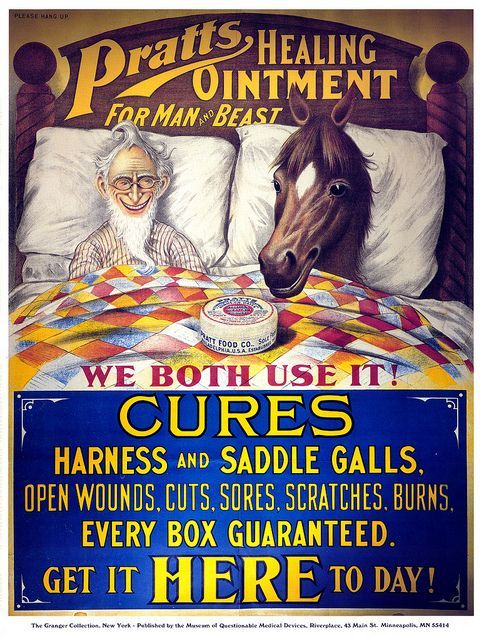 Is anyone questioning why this man is in bed with his horse and what exactly are they using that ointment for?