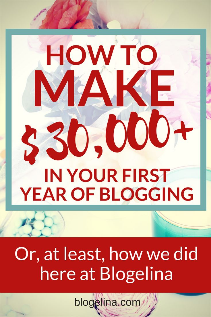 How To Gross Over $30,000 In Your First Year of Blogging – Or, At Least, How We Did It Here At Blogelina | Blogelina