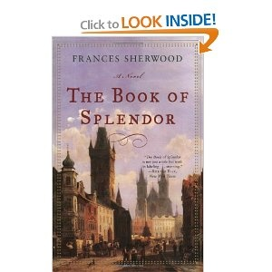 The Book of Splendor by Frances Sherwood - In this one now. Bought it before we went to Prague this summer where it is set, but just getting to it! So far enjoying it. The Maharal just made the Golem!