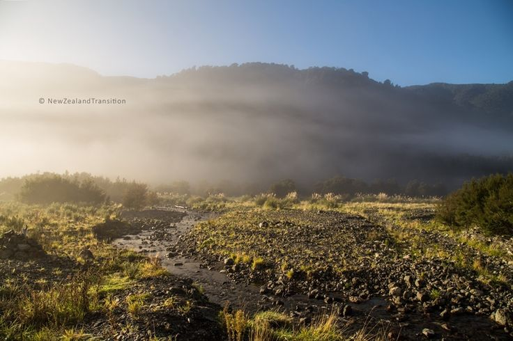 misty sunrise at Totara Flats