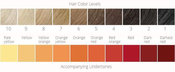 Hair Color Levels Charts Our Foolproof Guide To Choosing Tones Dyes Hair Color Chart Light Hair Color Hair Color