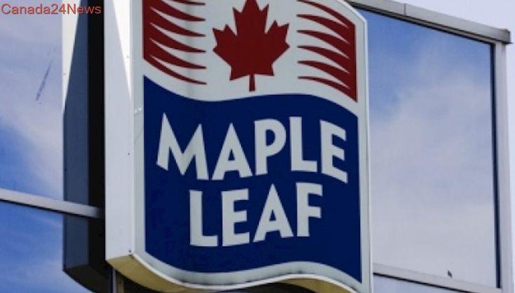 Maple Leaf Foods raises dividend after four quarter profit of over $59M