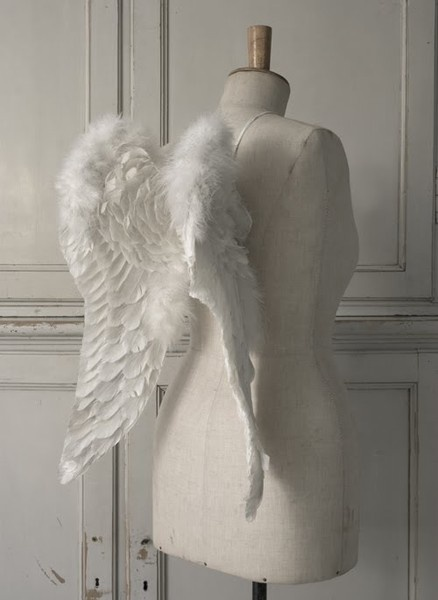 .white manni...  white diy angel wings..  in a corner..just for conversation..and style..(ecletic)