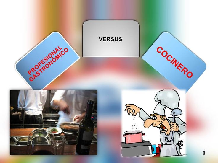 cocinero o profesional gastronómico