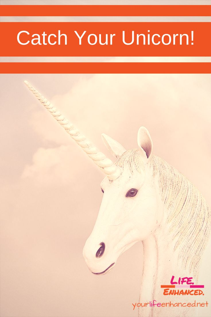 Catch your unicorn silly goose and take flight the
