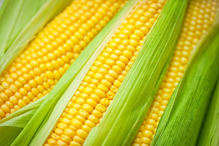 This recipe for corn on cob is bathed in a delicious southwestern butter mixture, grilled to perfection and serve hot and ready to eat.