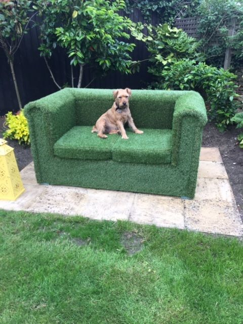 One very happy customer! Gorgeous god enjoying one of our artificial grass sofa's. Our artificial Grass sofa is a very heavy duty piece of furniture that can be left outdoors all year round and is much more comfortable that traditional timber or rattan furniture.