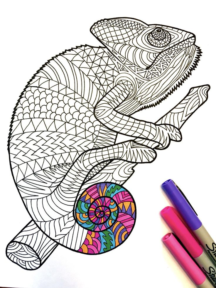 Chameleon - PDF Zentangle Coloring Page | Easy art ...