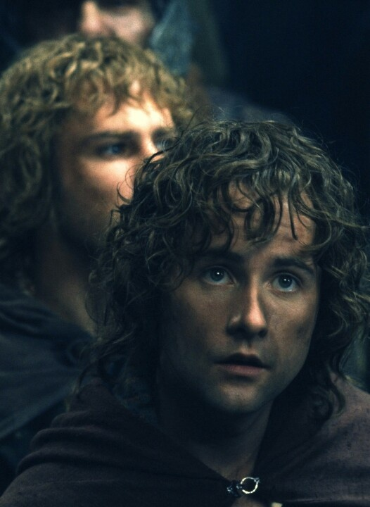 Merry and Pippin                                                                                                                                                                                 Plus