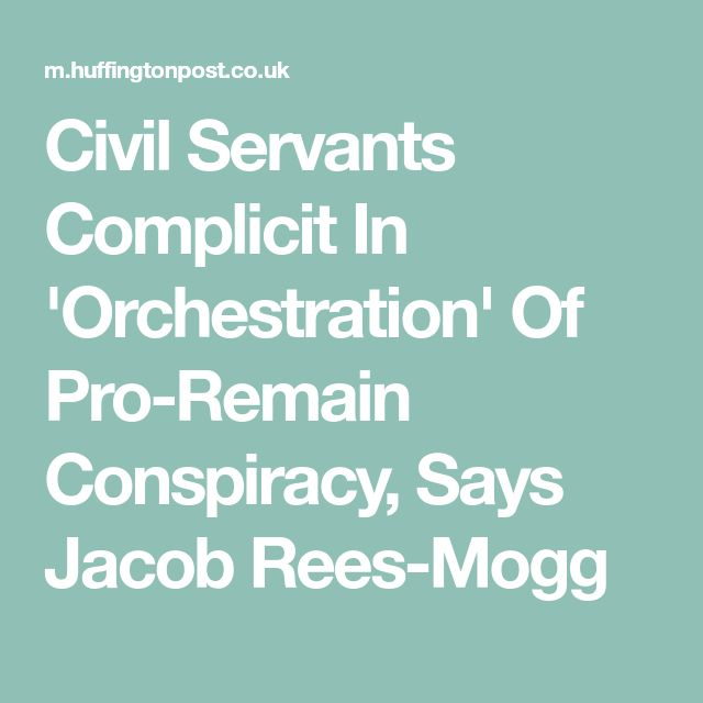 Civil Servants Complicit In 'Orchestration' Of Pro-Remain Conspiracy, Says Jacob Rees-Mogg