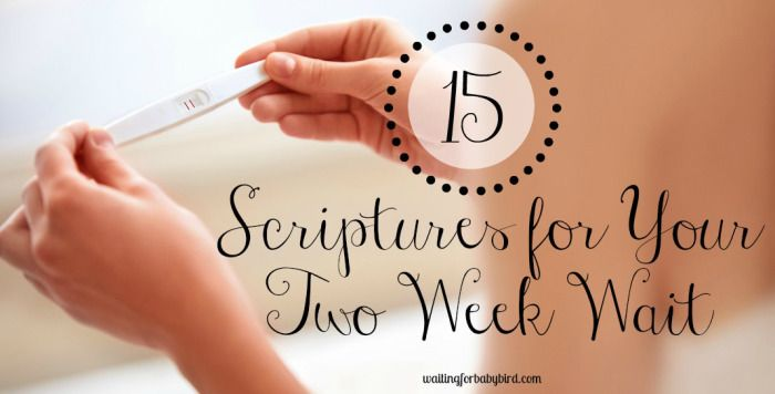 15 scriptures for your two week wait                                                                                                                                                                                 More