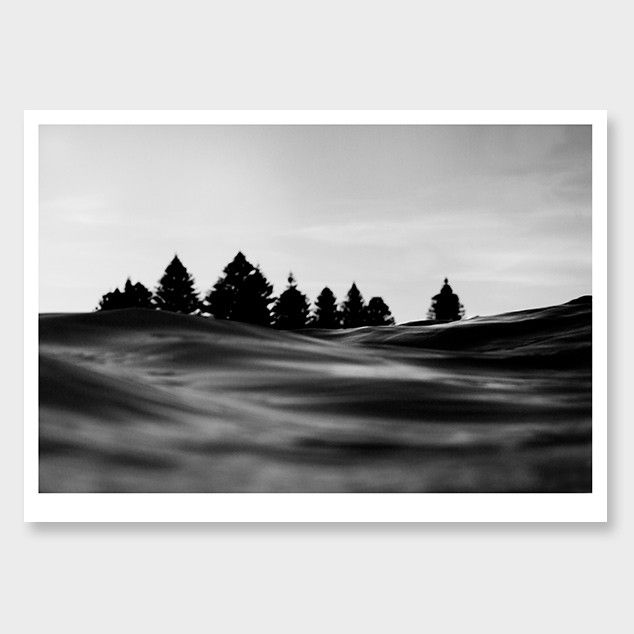 Untitled photographic art print by jenna smith nz art prints art framing design prints posters nz design gifts