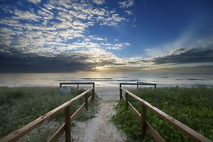 Image result for photo prints gold coast beach