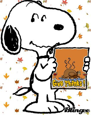 Happy Thanksgiving ☺️