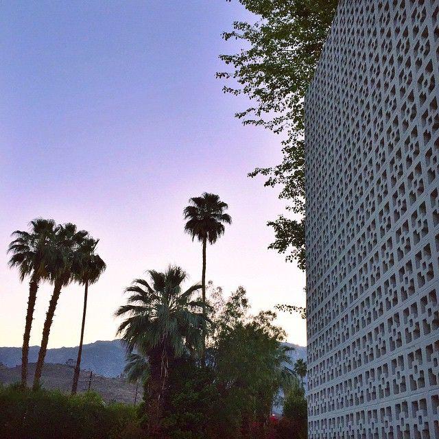 Good morning Palm Springs #Coachella www.sabrinascloset.com
