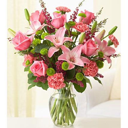 Make a fantastic gift for your loved ones that show your thought. If you want to buy special gifts and flowers then find our site. You can select your favourite flowers and gifts from Ferns N Petals online.