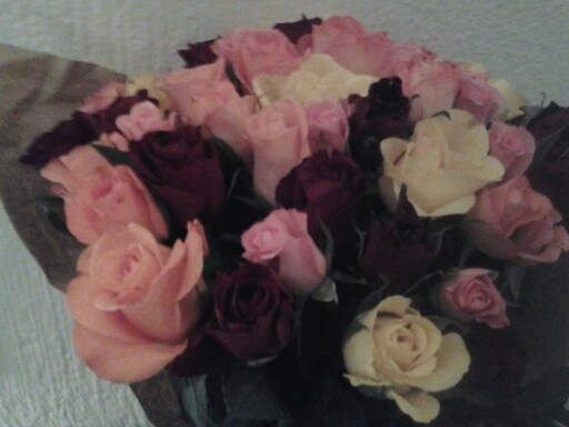 These roses are beautiful