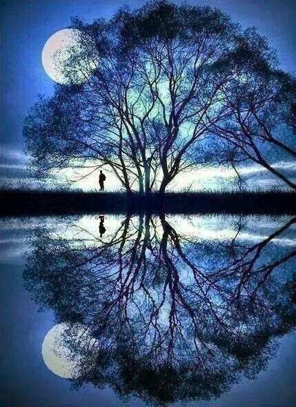 Beautiful Reflection all around~