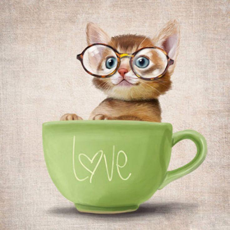 Новый 5D сделай сам алмаз живопись кот картина горный хрусталь кот в чашки вышивки крестом квадратный алмаз Embroidei мозаики купить на AliExpress
