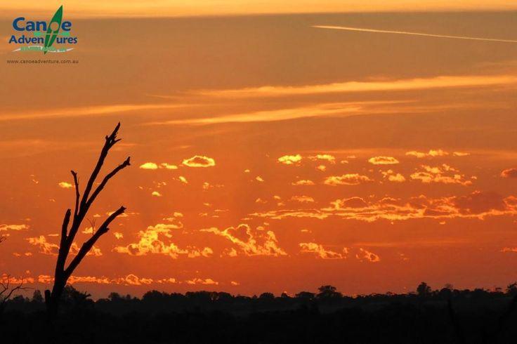 Murray River sunset, Berri SA