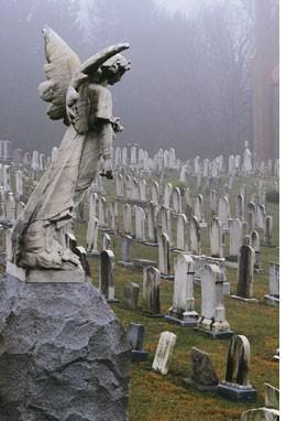 All Souls Cemetery. http://www.frightkingdom.com/