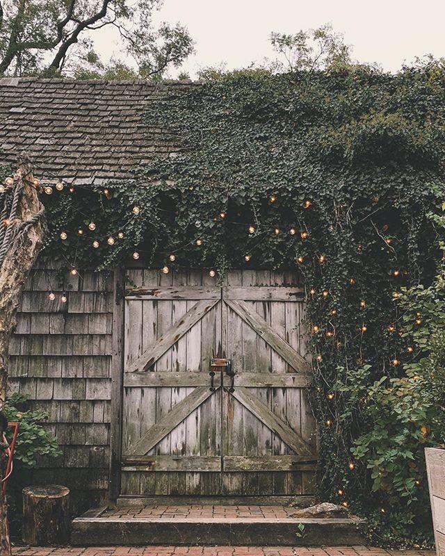 Moody mushroom hut caught by Instagram lynnkostelny