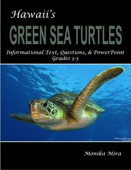 This Hawaii Sea Turtle Informational Text Article is great for Close Reading exercises and nonfiction or scientific informational text reading assignments. Students love to learn about Hawaiian Sea Turtles. The text is interdisciplinary so students meet reading requirements while discovering exciting topics in science.