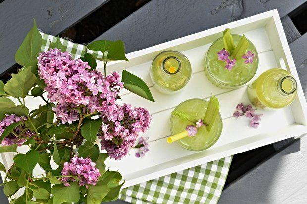 rebarborova limonada reabarborovy napoj recept postup navod priprava suroviny vyroba