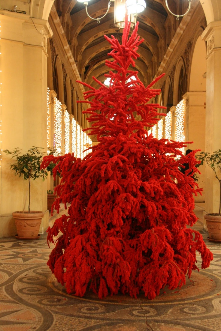 Christmas in Paris---This tree is RED?! Where has this been my whole life!?